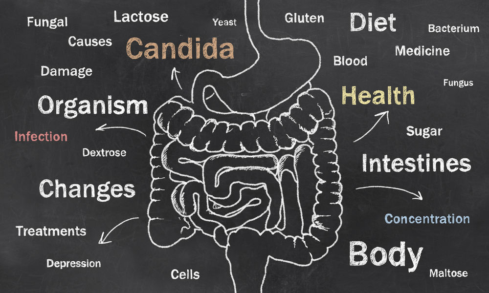 Candida Allergy & Related Illnesses - Allergy Solutions of